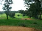 Algiers Golf Club